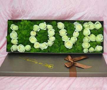 33支白色玫瑰/你是我的美人