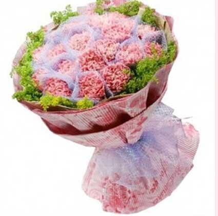 不朽的母爱/19支粉色康乃馨