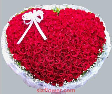 期待天长地久/365支玫瑰