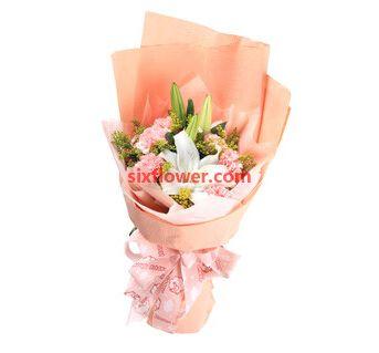 12枝粉色康乃馨/健康平安