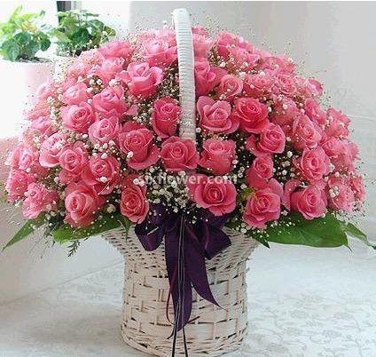 满满的爱/101枝粉玫瑰花篮