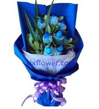 强大的磁石/9支蓝玫瑰