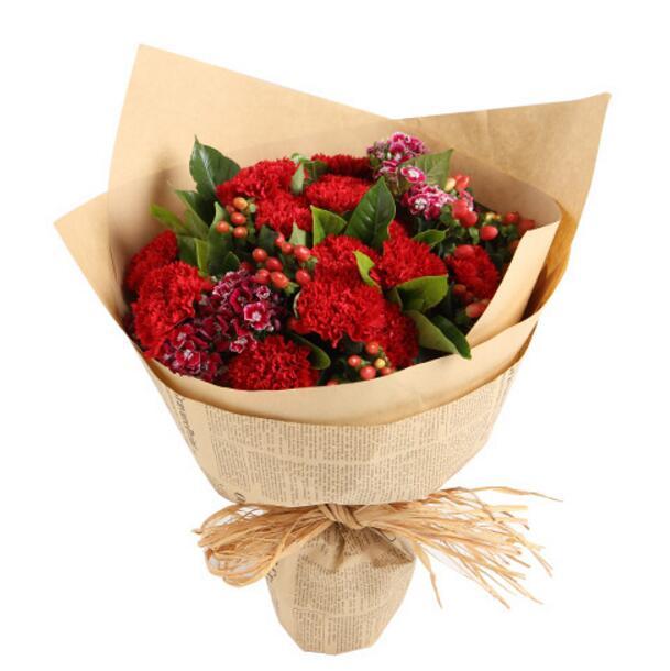 温暖的心房/16枝红色康乃馨