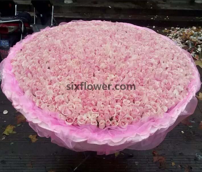 1314支粉色玫瑰/一生的爱你
