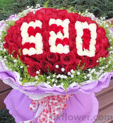 心甘情愿/99枝红玫瑰