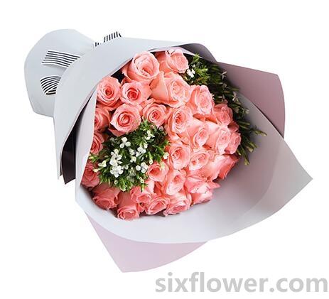 粉玫瑰33支/纯真岁月