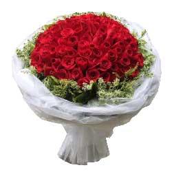 99支红玫瑰/至爱