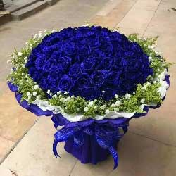 我爱你火焰永不息/99支蓝色玫瑰