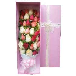 共同的未来/33枝玫瑰礼盒