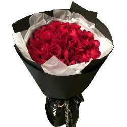 我一生只为你而来/33支红色玫瑰