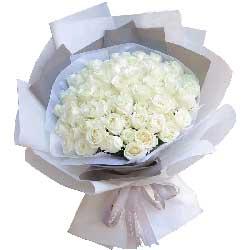 你是我要找的那个人/33支白色玫瑰