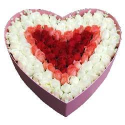你在我心里/99支玫瑰礼盒