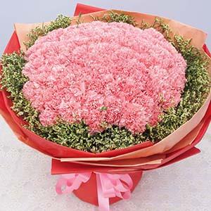 深切的祝福/99枝粉色康乃馨