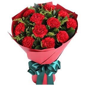 11枝红色康乃馨/幸福