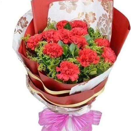 让你快乐又幸福/12支红色康乃馨