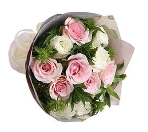 甜蜜/粉白玫瑰12支