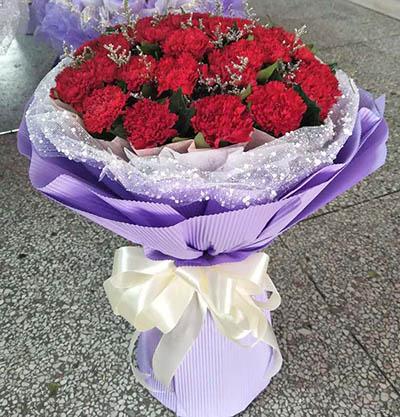 深深的祝福/33枝红色康乃馨