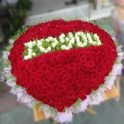 365支玫瑰花/只爱你一人
