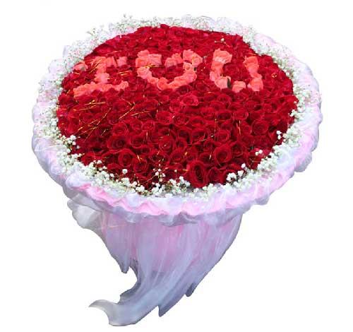 365支玫瑰/我的爱你看得见
