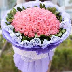 99枝粉色玫瑰/无悔的选择