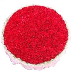 999朵玫瑰/爱你到永远