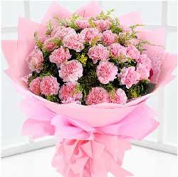 19枝粉色康乃馨/用我心抚平您额上的皱纹