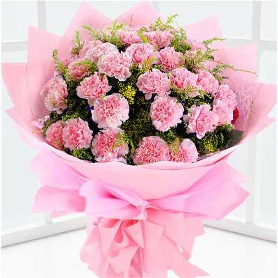 19支粉色康乃馨/用我心抚平您额上的皱纹