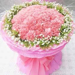 33枝粉康乃馨/快乐度过每一天