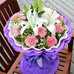 11支粉色康乃馨/美丽时光