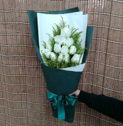 12支白玫瑰/冷艳与骄傲