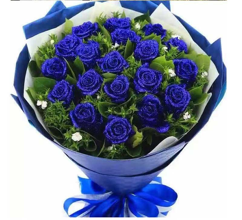 你是我浪漫的蓝色情人/19支蓝玫瑰