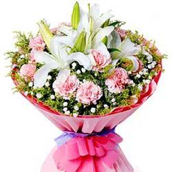 11支粉色康乃馨/儿女的心愿