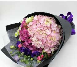 11支紫玫瑰/感恩的心