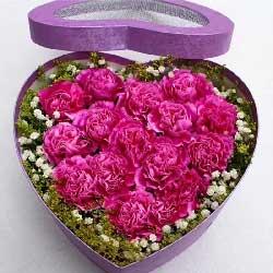 我的祝福常在您身边/16支紫色康乃馨