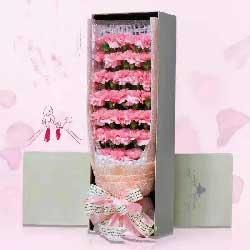 22支粉色康乃馨/把无数的思念化做心中无限的祝福