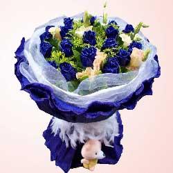 希望时间停在这一秒,让爱的歌谣随风飘送/19支蓝玫瑰