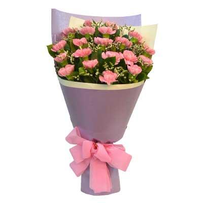 粉色康乃馨20支/敬祝你健康如意,福乐绵绵