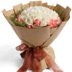52支玫瑰/精心呵护我们的爱