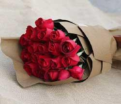 19支红玫瑰/夜晚有梦就有你