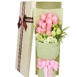 11枝粉玫瑰/你是我的中心,你是我的焦点
