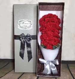 让我送上一个甜甜的笑/29支红色康乃馨