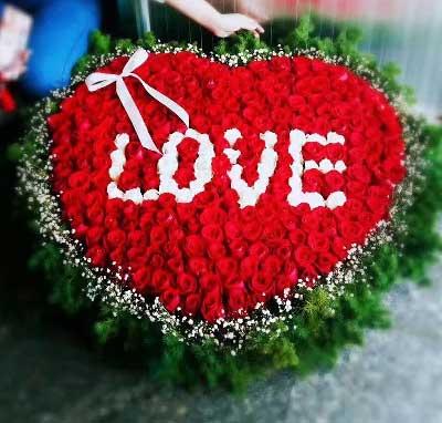 365支红玫瑰/亲密的爱人