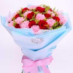 您的爱是崇高的爱/21支粉色康乃馨玫瑰
