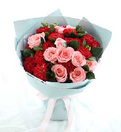 19支康乃馨玫瑰/祝您永远年轻靓丽