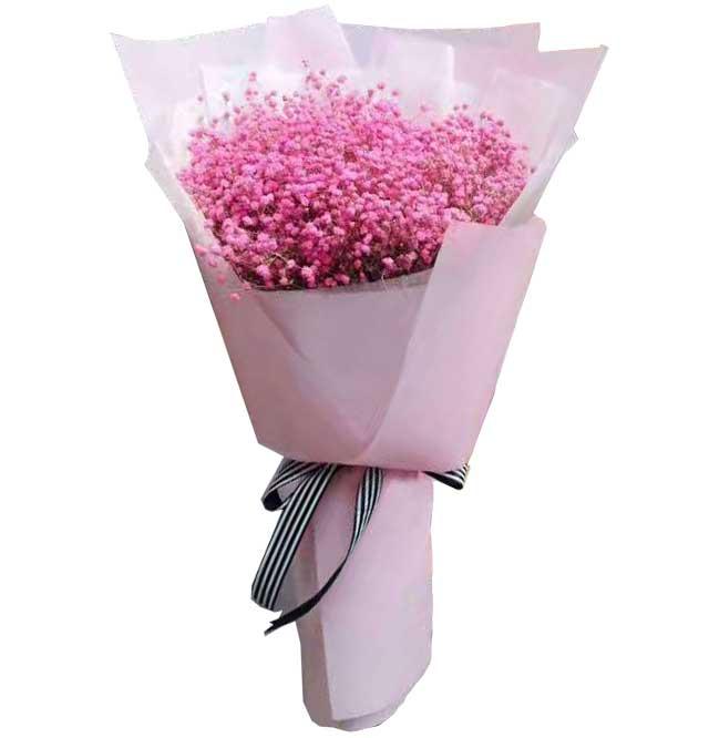 我的世界需要你/粉色满天星