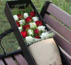19支玫瑰/你是我最在乎的人
