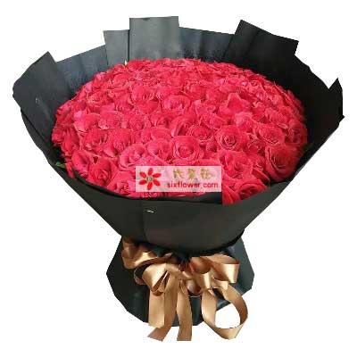 我的全部精力呵护你/99支红色玫瑰