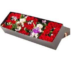 我愿意走进这美妙的爱情世界/33枝红色玫瑰