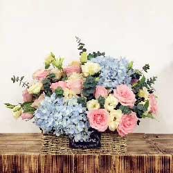 祝你安好/19支粉色玫瑰,2支蓝色绣球花
