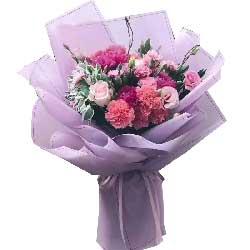 美丽的妈妈/康乃馨+玫瑰